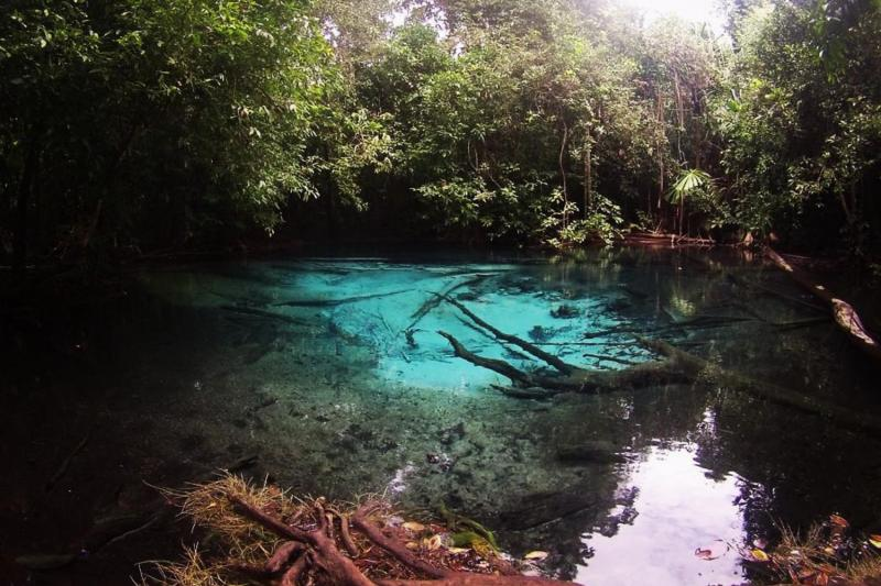Emerald pool,Krabi