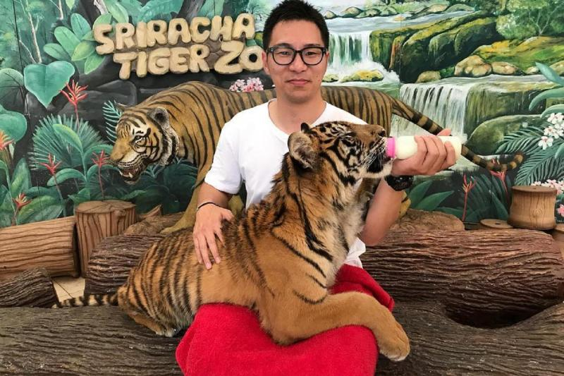 Image result for 2. Sriracha Tiger Zoo